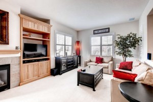 232 Whitehaven Circle-small-005-5-Living Room-666x444-72dpi